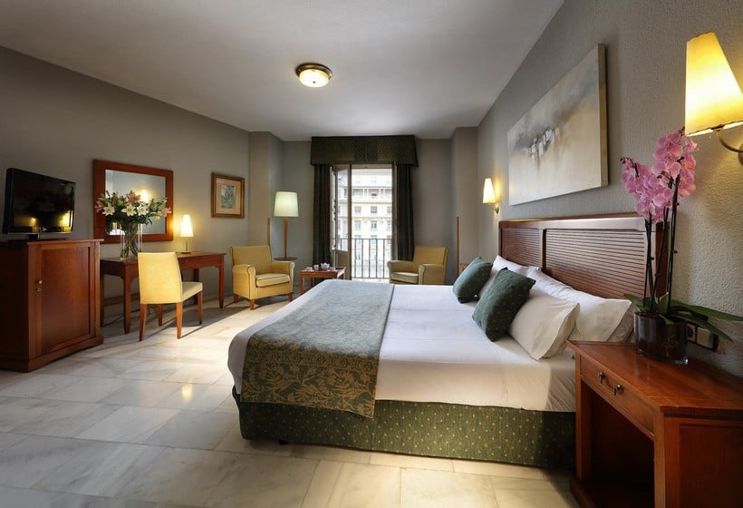 Room Hotel Juan Miguel Granada