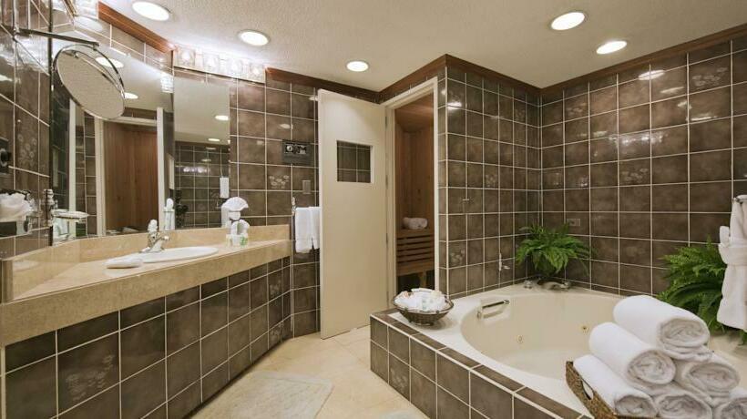 Bathroom Hotel Holiday Inn San Jose Aurola