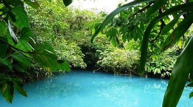 Costa Rica: Tortuguero, Playas del Caribe y Volcán Arenal