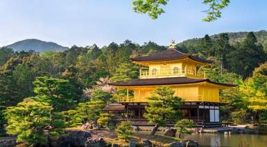 Japón Básico con 2 visitas