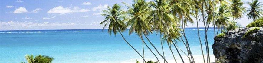 Descubre Barbados