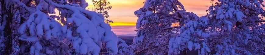 Viaje organizado a Laponia
