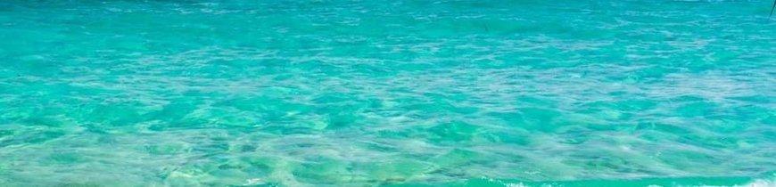 Honduras: Aventura en la Naturaleza e Isla Caribeña de Roatán - BLACK FRIDAY