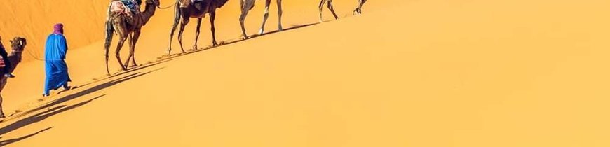 Marruecos: Mil kasbahs + Sur + Desierto