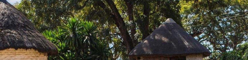 Descubre Zambia