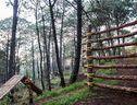 De Montana Monteverde