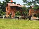 Apm Equestrian Resort